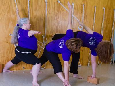 Classes Dallas Area Yoga Instruction Beginner To Advanced Iyengar