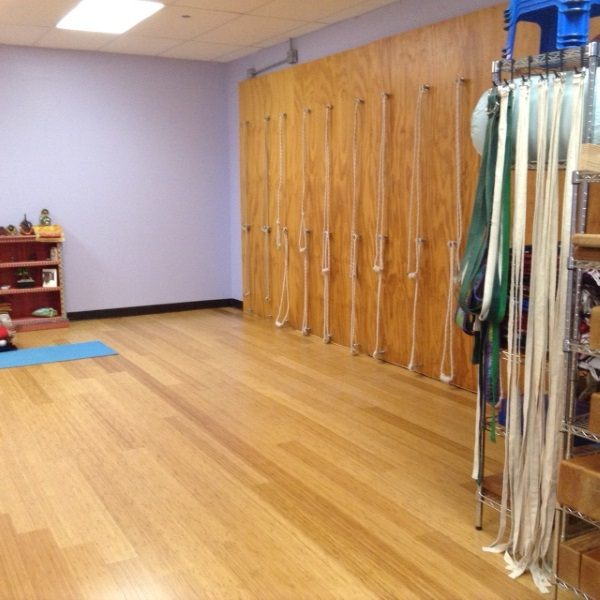 Yoga Mart USA new Studio Rope Wall
